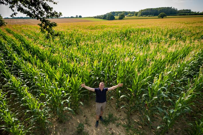 L'emploi salarié en augmentation dans la branche agricole