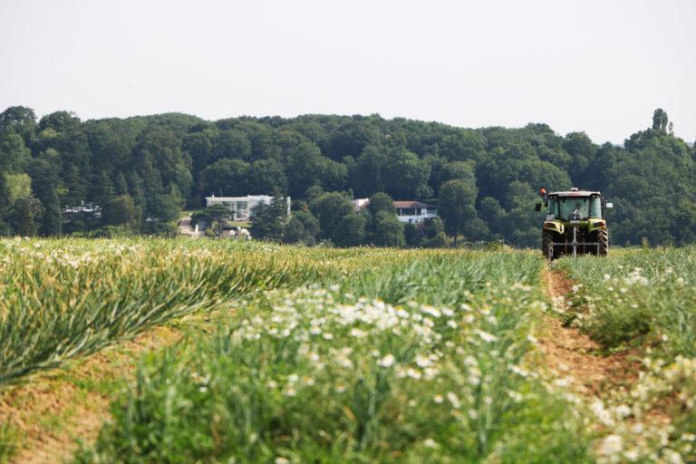 Le secteur agricole et la grande distribution à l'épreuve du BAC PRO