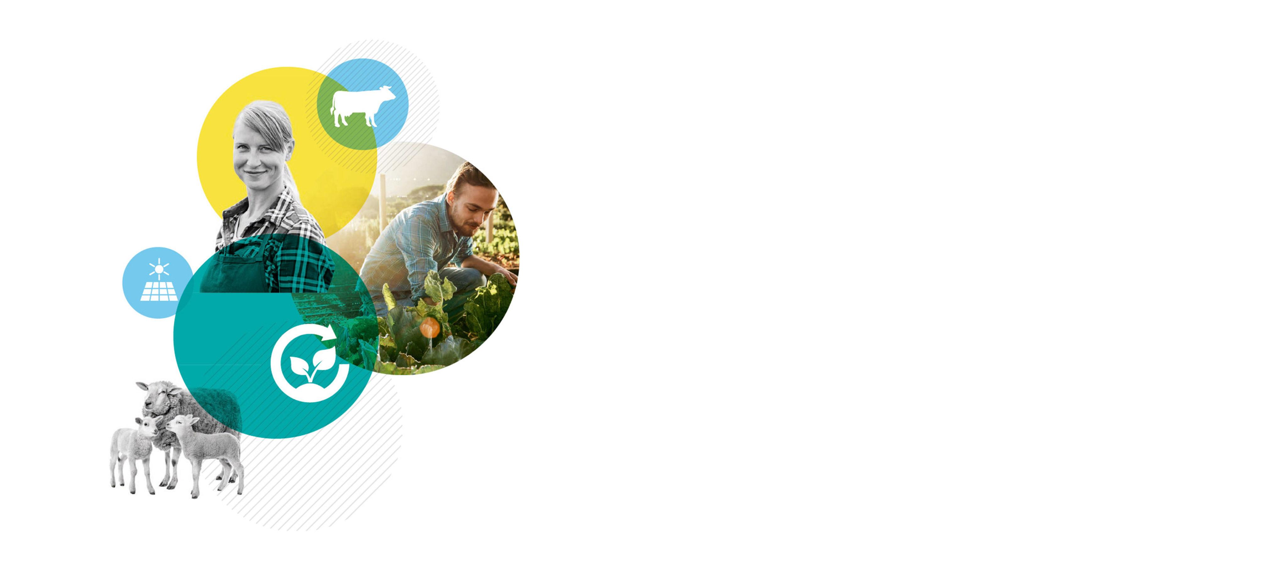 Actions & perspectives : rapport annuel 2019 de la FNSEA