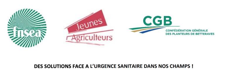 Tribune FNSEA – JA – CGB « Des solutions face à l'urgence sanitaire dans nos champs ! »