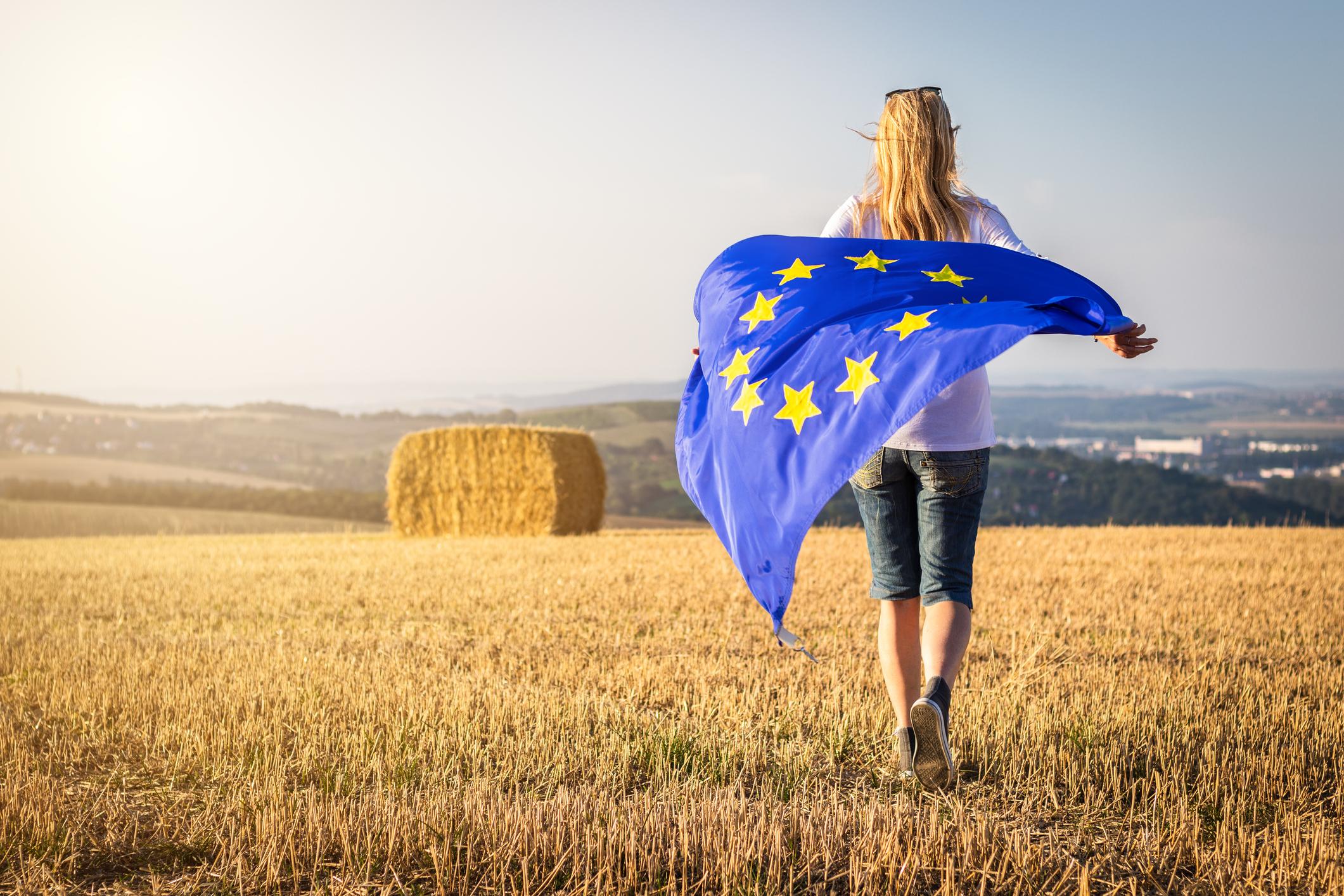 Conseil agricole européen : les ministres trouvent un accord sur la future PAC